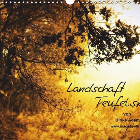 Landschaft Teufelsmoor - Posterbuch