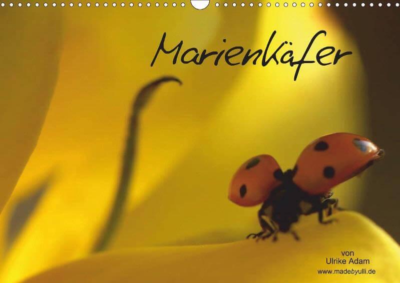 Marienkäfer - Posterbuch