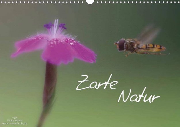Zarte Natur - Kalender