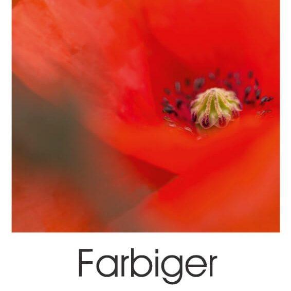 Farbiger Blütentraum (Planer)