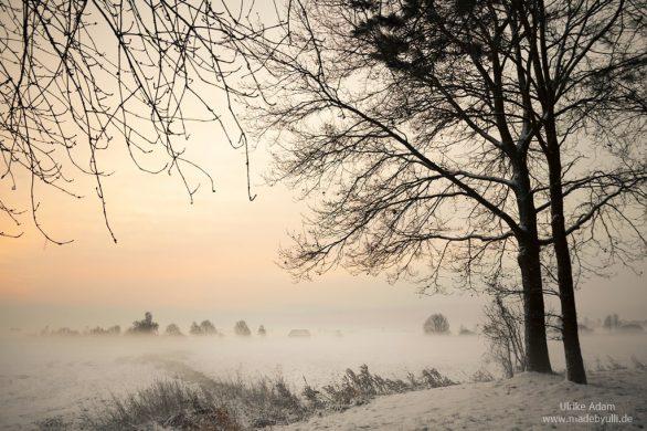 Winter im Teufelsmoor