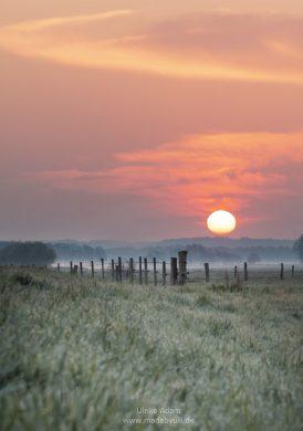 Sonnenaufgang im Teufelsmoor / Osterholz-Scharmbeck
