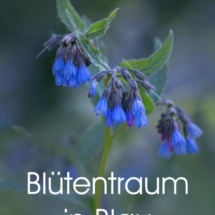 Blütentraum in Blau - Planer