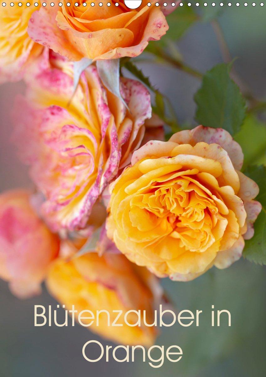 Blütenzauber in Orange - Planer