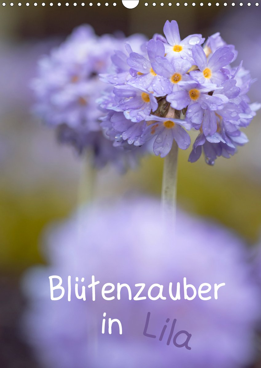 Blütenzauber in Lila - Planer