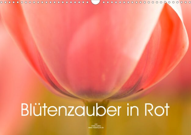 Blütenzauber in Rot - Geburtstagskalender