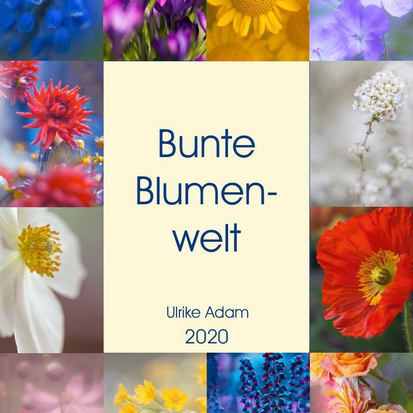 Bunte Blumenwelt - Kalender