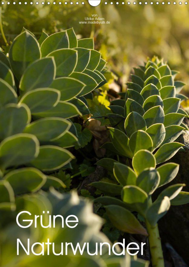 Grüne Naturwunder - Familienplaner