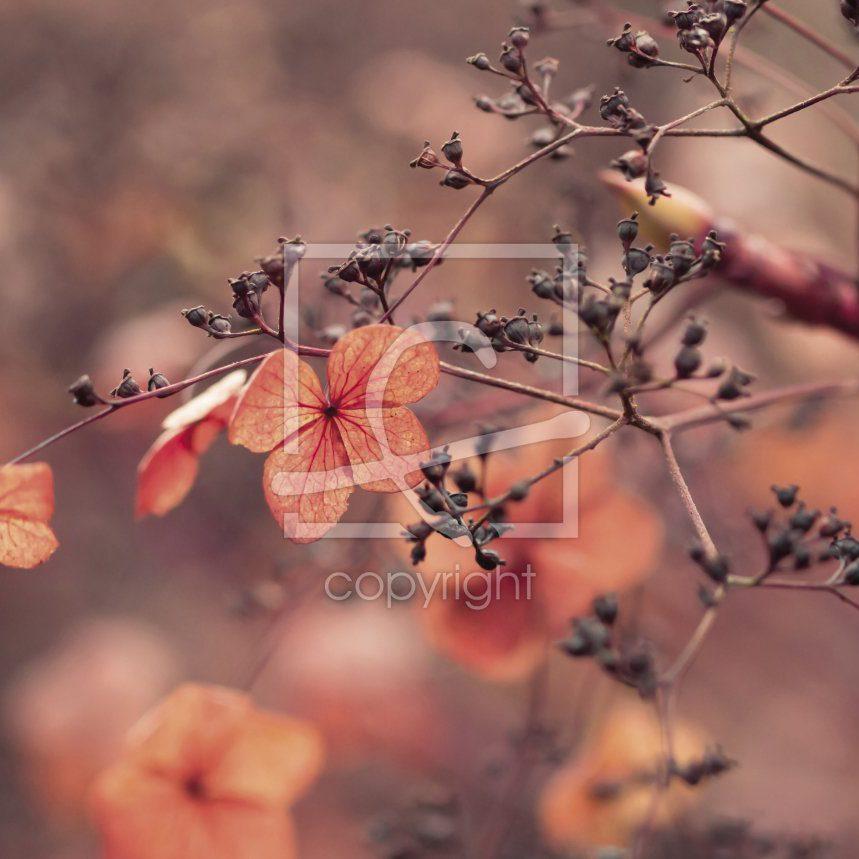 Herbstfarben - Leinwand