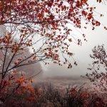 Herbst im Teufelsmoor