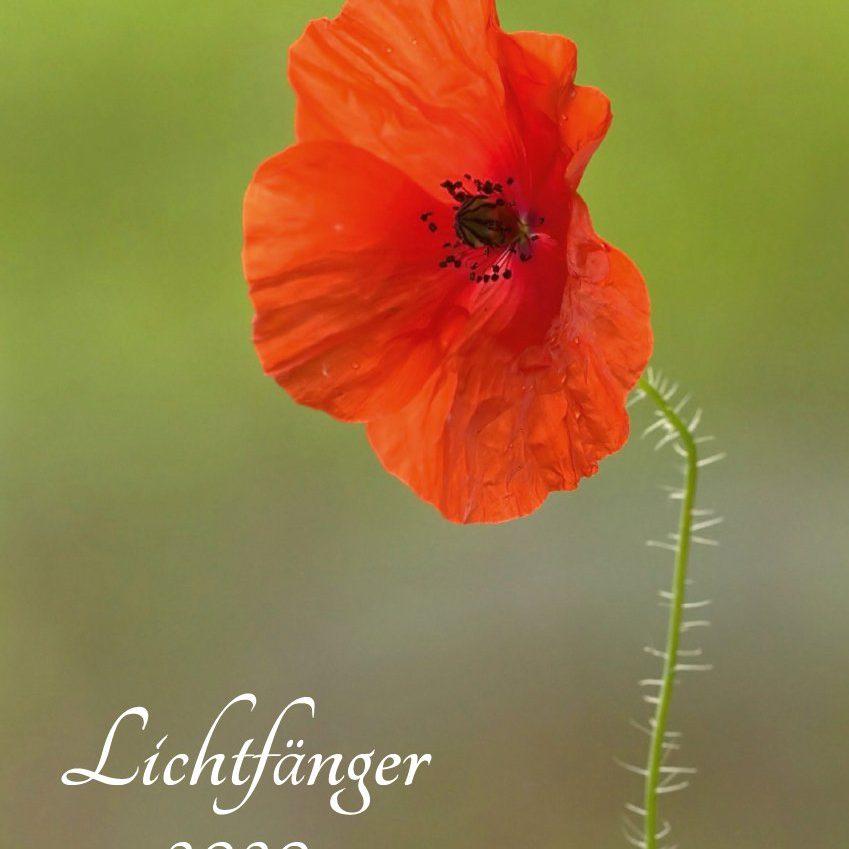 Lichfänger (Kalender)