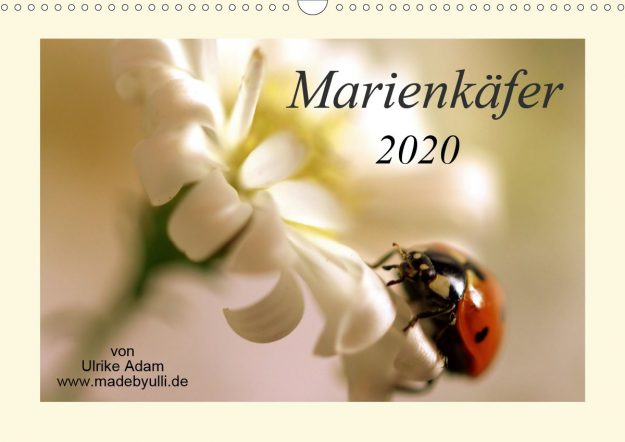 Marienkäfer (Kalender)