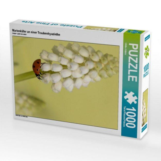 Marienkäfer an einer Traubenhyazinthe - Puzzle