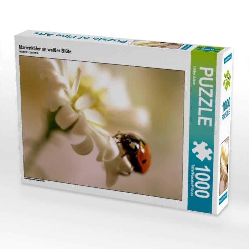 Marienkäfer an weißer Blüte - Puzzle