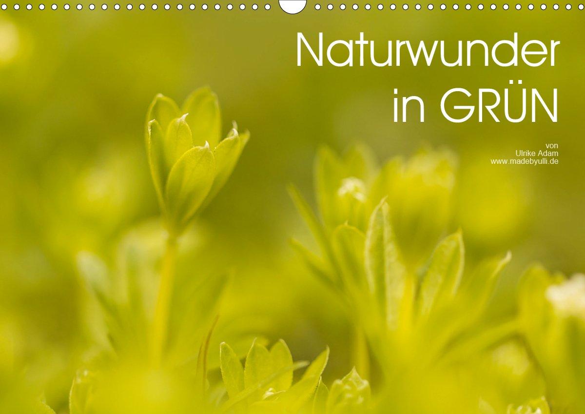 Naturwunder in GRÜN - Kalender