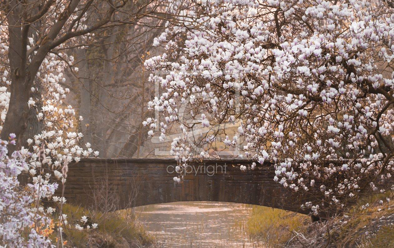 Paradise garden - Leinwand