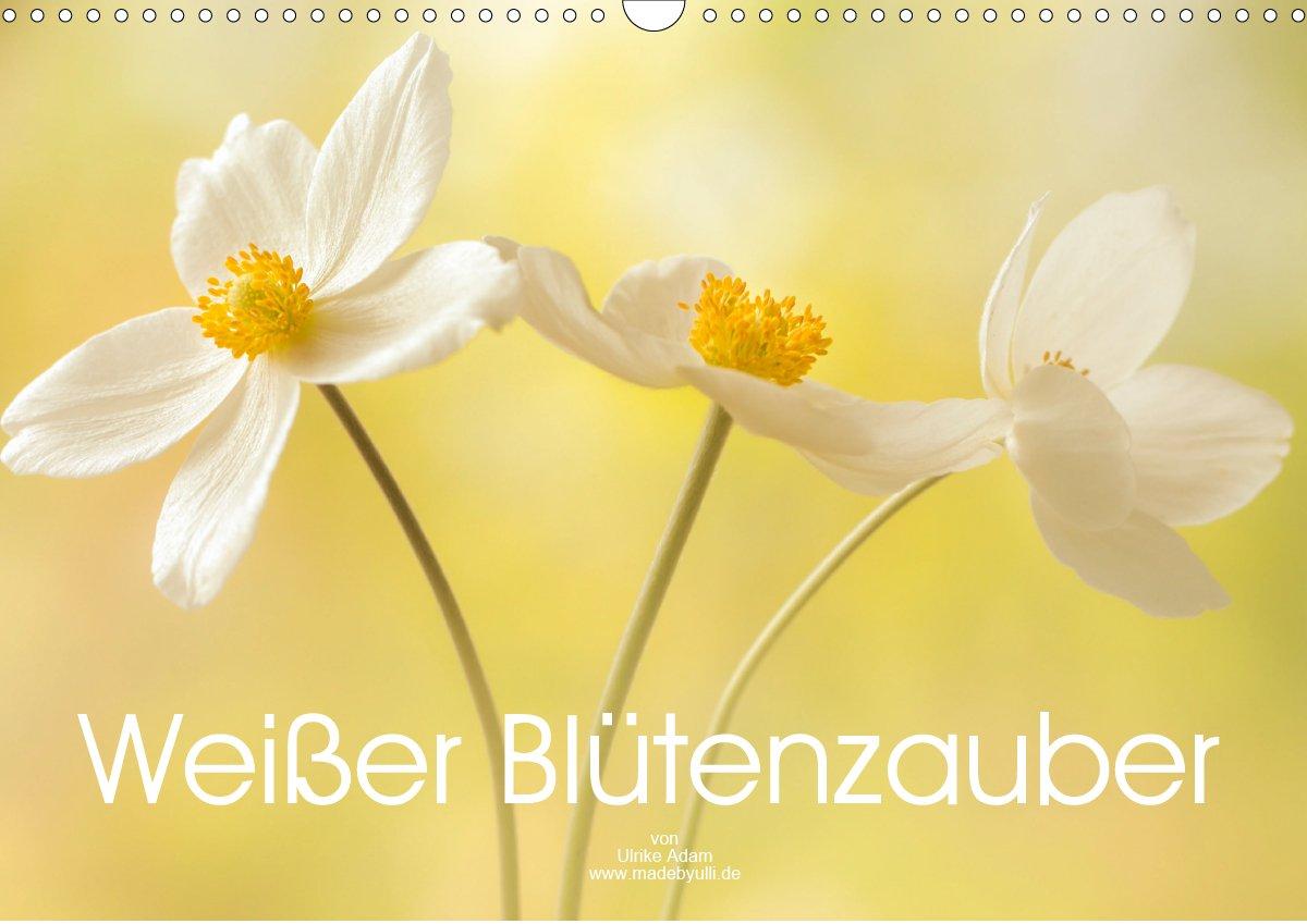 Weißer Blütenzauber (Kalender)