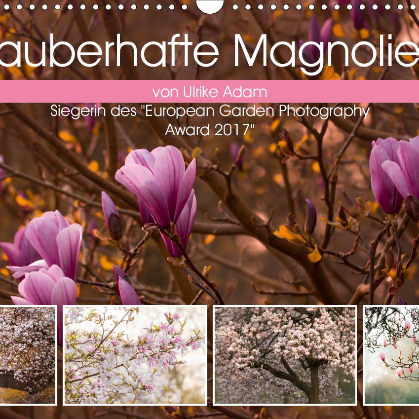 Zauberhafte Magnolien (Kalender)