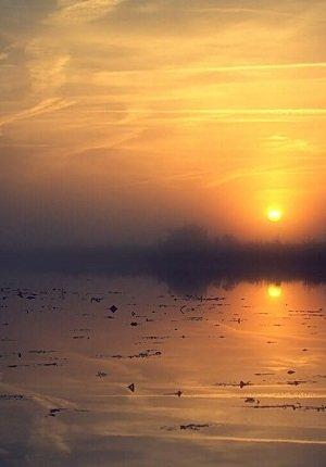 guten-morgen-traumland-teufelsmoor-vorschaubild